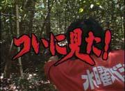 ★九州探検推進委員会★