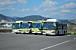 広島県のバス