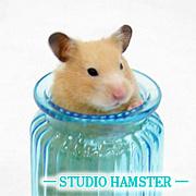 【STUDIO HAMSTER】