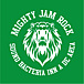 MIGHTY JAM ROCK fun!!