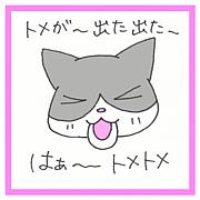 トメちゃ@くるねこ