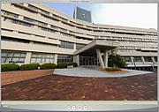 2013年 神戸親和女子大学 新入生