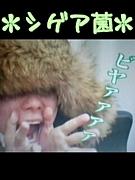 シゲア菌☆ビヤァァァァ
