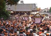 大東京神輿 「粋な祭」