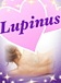 Lupinus☆女磨きの女子会