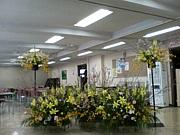 東京家政大学 *華道部草月流*