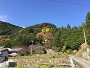 関西山遊会