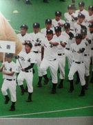 入善高校野球部