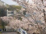 岡山理科大学附属高校 Sコース