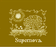 supernova is band!