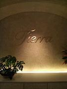 ☆NEW Tierra