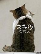 ぎゅっの魔法☆.。.:*・°