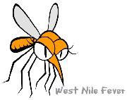 West Nile Fever