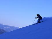 東海地区の基礎スキーヤー集合w