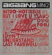 바보(Fool)/BIGBANG