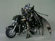 Figure de Ride