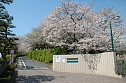 浜松西高◆2008/3/3◆卒業生