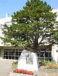 札幌市立手稲東小学校 1996年卒