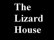 The Lizard House