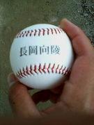 長岡向陵野球部