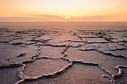 アラル海を救おう!