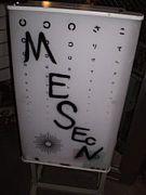 MESEN