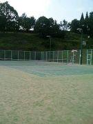 ソフトテニスサークルTOSS