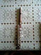 茶色い楽器吹き