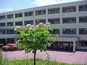 甲陽学院 91回生