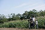 週末農業 田舎暮らし
