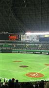 プロ野球 福岡SoftBankHawks