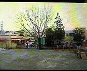 諏訪幼稚園1997年卒園生( ^_^)