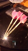 Enjoy Darts Tochigi団