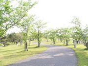 散歩好き@福岡
