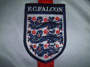 F.C.FALCON