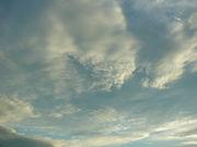 この空の下で生きる私たちの詩