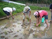 自然・ものづくり・農業を教育に