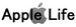 Apple(���åץ�)