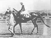 「幻の馬」トキノミノル