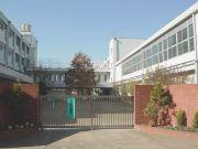 三原台中学 1995卒