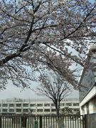 桜町小 〜86年度生まれ〜