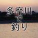 多摩川で釣り