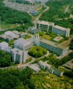 市邨学園 短期大学