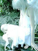 謎の妖精♬♪.♦。+