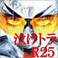 しゃべり場・泣けるトランスR25