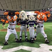 東京ドームで西武主催試合やろう