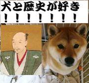 犬と歴史が好き!!!!!!