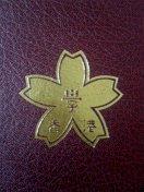 香港日本人学校 88〜89年生まれ