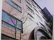 豊島岡2007(平成19)年度卒3年8組
