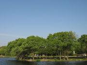 山田池公園でのんびり☆